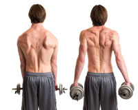 Dumbbell Shrug Exercise Stock Image