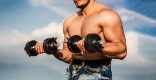 dumbbell Sterke bodybuilder, perfecte deltaspieren, schouders, bicepsen, triceps en borstspieren met domoor Mens royalty-vrije stock afbeeldingen