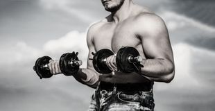 dumbbell Sterke bodybuilder, perfecte deltaspieren, schouders, bicepsen, triceps en borstspieren met domoor Mens stock afbeeldingen