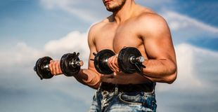Dumbbell. Strong bodybuilder, perfect deltoid muscles, shoulders, biceps, triceps and chest. Muscles with dumbbell. Man royalty free stock images