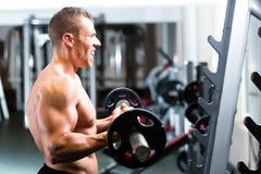 Dumbbell szkolenie w gym Fotografia Stock