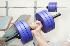Dumbbell training. Dumbbell biceps sport training at home Royalty Free Stock Photography