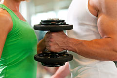 Dumbbell training in gym Stock Photography