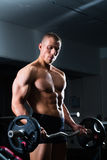 Dumbbell training in gym Stock Images