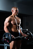 Dumbbell training in gym Royalty Free Stock Photos