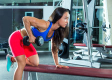 Dumbbell triceps kickback girl exercise at gym Royalty Free Stock Images
