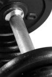 Dumbbell und Gewichte stockfotos