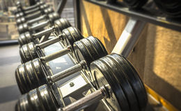 Dumbbell. View of rows of dumbbells on a rack in a gym Royalty Free Stock Photos