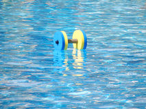 Dumbbell for water aerobics. Floating aqua aerobics dumbbell in swimming pool Royalty Free Stock Photography
