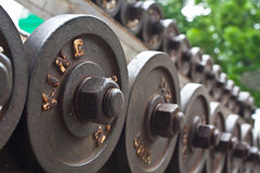 Dumbbell. Weight training to the strong muscle royalty free stock images