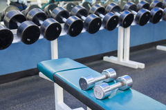 Dumbbell weights. As found in a typical gym royalty free stock photos