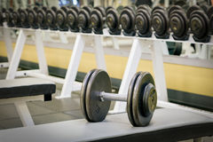 Dumbbell weights. On bench as found in a typical gym Stock Photos