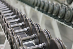 Dumbbell weights Royalty Free Stock Image