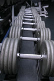 Dumbbell weights in gym. Stack of dumbbell weights in gym Stock Photography