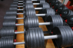 Dumbbell weights in gym Stock Photos