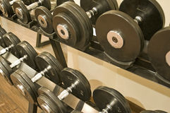 Dumbbell weights on a rack. In a gym Stock Images