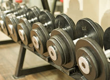Dumbbell weights on a rack. In a gym Stock Image