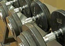 Dumbbell weights on a rack Royalty Free Stock Photos