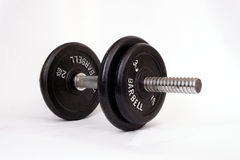 Dumbbell on white background. Barbell on white background in gym stock images
