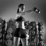Dumbbell woman workout fitness at gym Stock Photos