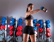 Dumbbell woman workout fitness at gym Stock Photography