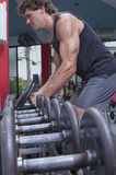 Dumbbell workout in gym Royalty Free Stock Image