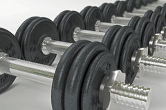 Dumbbell13 Royalty Free Stock Image