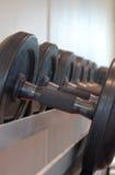 Dumbbells. Gymnasium. Equipment for powerlifting (dumbbells Stock Photo