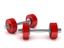 Dumbbells illustrazione vettoriale