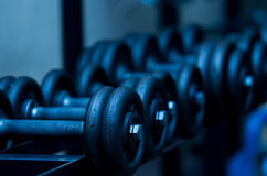 Dumbbells Stockbilder