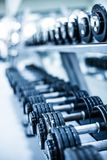 Dumbbells obraz royalty free