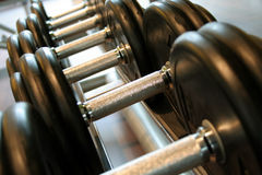 Dumbbells. Some heavy dumbbells in a fitness studio Stock Photography