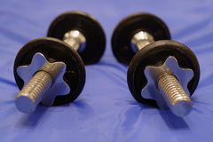 Dumbbells. A pair of dumbbells on a blue gym mat royalty free stock image