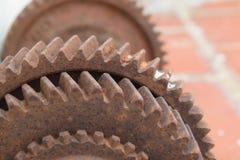 dumbbells Imagen de archivo