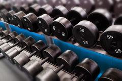 dumbbells Stockfotografie