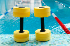 Dumbbells for Aqua Aerobics Stock Images
