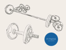 Dumbbells barbells and weight fitness , sketch vector. Stock Photo