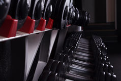 Dumbbells Stock Image