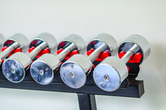 Dumbbells of different scales lie on the sports Stock Photography