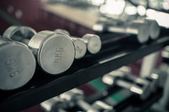 Dumbbells of different scales lie on the sports shelf Stock Image