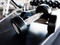 Dumbbells dla sprawności fizycznej w gym Obrazy Stock