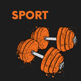 Dumbbells drawn in vector. Illustration for a postcard or a poster. Beauty, strength and health. Sport. Healthy lifestyle. Weightl. Dumbbells drawn in vector Stock Image