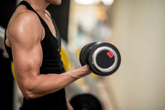 Dumbbells for exercise in Fitness Room. Royalty Free Stock Photography