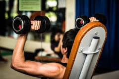 Dumbbells for exercise in Fitness Room. Stock Image