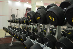 Dumbbells in a fitness center, exercise, working out Royalty Free Stock Photo