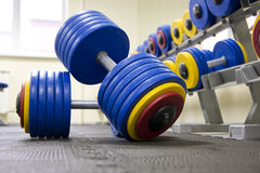 Dumbbells in fitness club Royalty Free Stock Photography