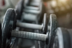 Dumbbells for fitness stock photography
