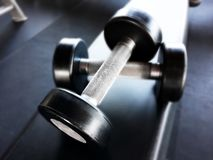 Dumbbells for fitness in the gym. Lie on a rubberized bench Stock Image