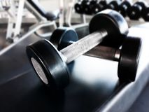 Dumbbells for fitness in the gym. Lie on a rubberized bench Stock Images