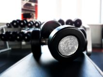 Dumbbells for fitness in the gym. Lie on a rubberized bench Stock Photo